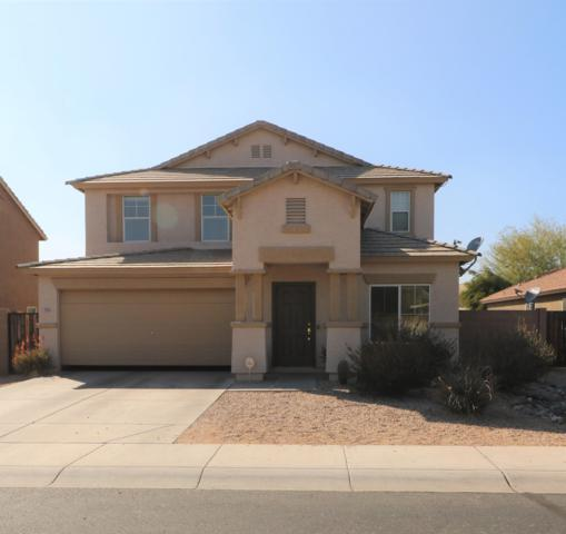906 S 242ND Drive, Buckeye, AZ 85326 (MLS #5889373) :: Yost Realty Group at RE/MAX Casa Grande