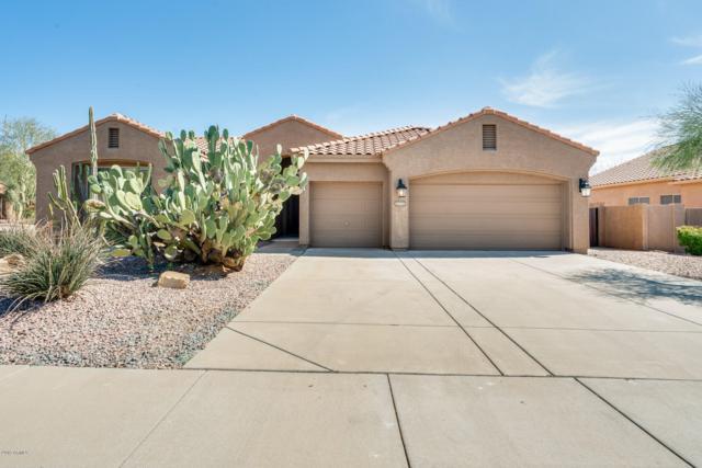 22643 N 47TH Place, Phoenix, AZ 85050 (MLS #5889380) :: RE/MAX Excalibur