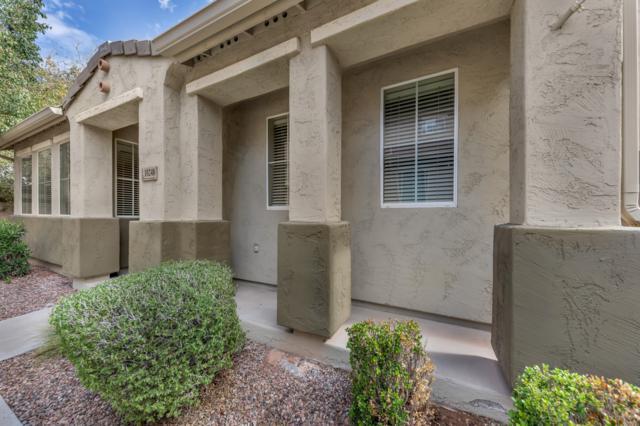 10248 E Isleta Avenue, Mesa, AZ 85209 (MLS #5889391) :: Yost Realty Group at RE/MAX Casa Grande