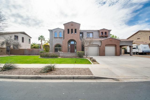 18679 E Pine Barrens Avenue, Queen Creek, AZ 85142 (MLS #5889414) :: CC & Co. Real Estate Team