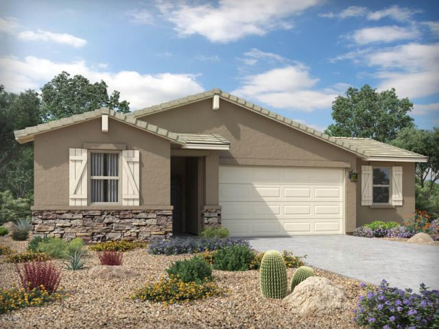 10228 W Wood Street, Tolleson, AZ 85353 (MLS #5889434) :: The Laughton Team