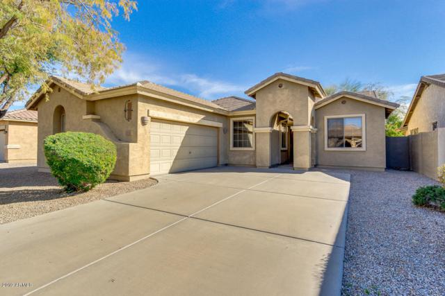 1711 W Kingbird Drive, Chandler, AZ 85286 (MLS #5889537) :: Revelation Real Estate