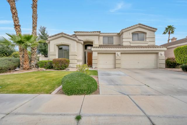 692 W Honeysuckle Drive, Chandler, AZ 85248 (MLS #5889611) :: Revelation Real Estate