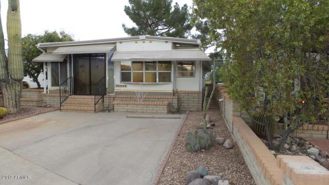 2646 S Seminole Drive, Apache Junction, AZ 85119 (MLS #5889635) :: The Kenny Klaus Team