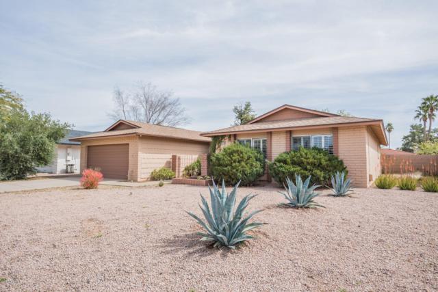 8643 E Via Del Palacio, Scottsdale, AZ 85258 (MLS #5889685) :: Yost Realty Group at RE/MAX Casa Grande