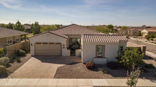 21844 S 221ST Place, Queen Creek, AZ 85142 (MLS #5889712) :: Yost Realty Group at RE/MAX Casa Grande
