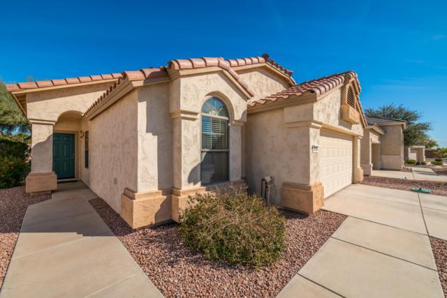 18086 W Sammy Way, Surprise, AZ 85374 (MLS #5889731) :: CC & Co. Real Estate Team