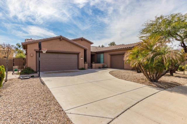 2513 E Zion Way, Chandler, AZ 85249 (MLS #5889814) :: The Daniel Montez Real Estate Group