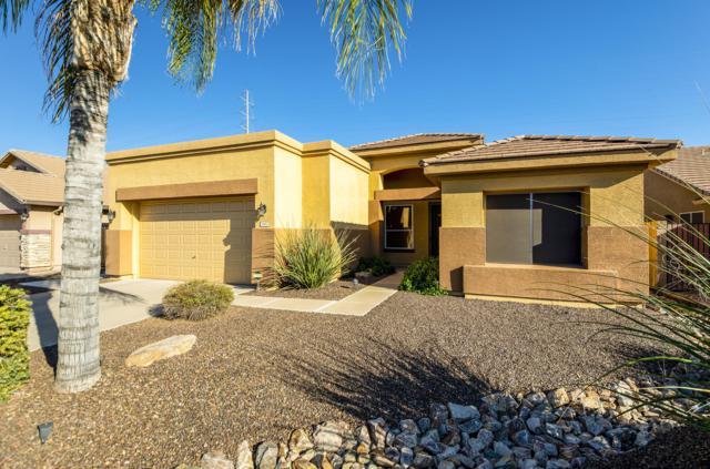 3467 S Joshua Tree Lane, Gilbert, AZ 85297 (MLS #5889957) :: Yost Realty Group at RE/MAX Casa Grande