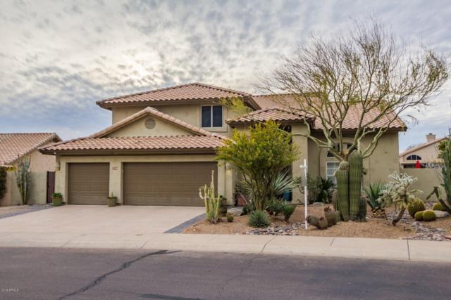 19240 N 90TH Place, Scottsdale, AZ 85255 (MLS #5889978) :: Yost Realty Group at RE/MAX Casa Grande