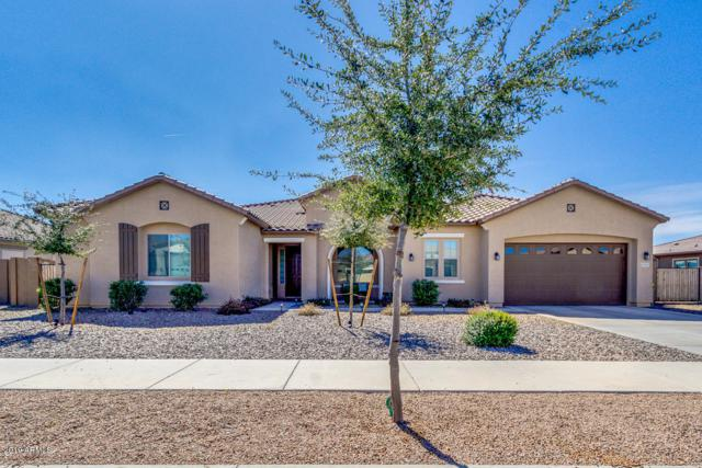 21957 E Russet Road, Queen Creek, AZ 85142 (MLS #5890038) :: Revelation Real Estate
