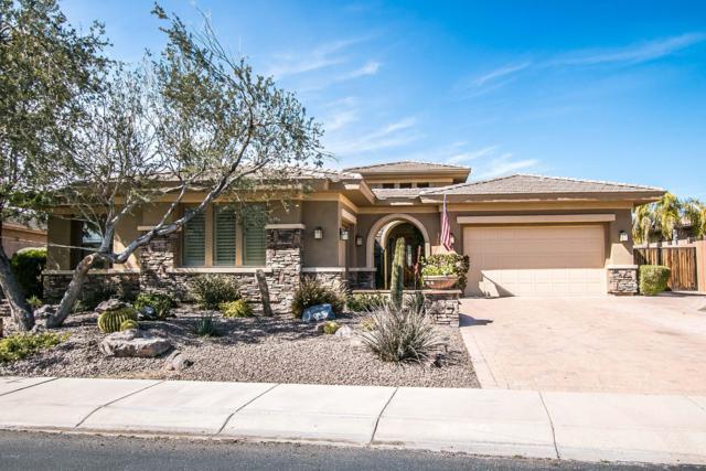 29404 N 120TH Lane, Peoria, AZ 85383 (MLS #5890076) :: Yost Realty Group at RE/MAX Casa Grande