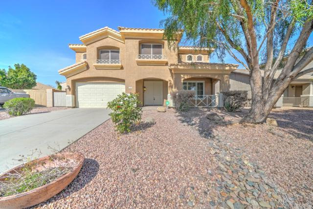 7858 W Donald Drive, Peoria, AZ 85383 (MLS #5890090) :: Yost Realty Group at RE/MAX Casa Grande
