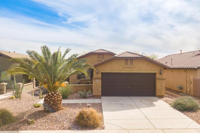8073 W Sonoma Way, Florence, AZ 85132 (MLS #5890125) :: CC & Co. Real Estate Team