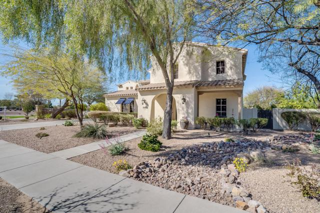20108 E Via Del Palo, Queen Creek, AZ 85142 (MLS #5890163) :: Revelation Real Estate