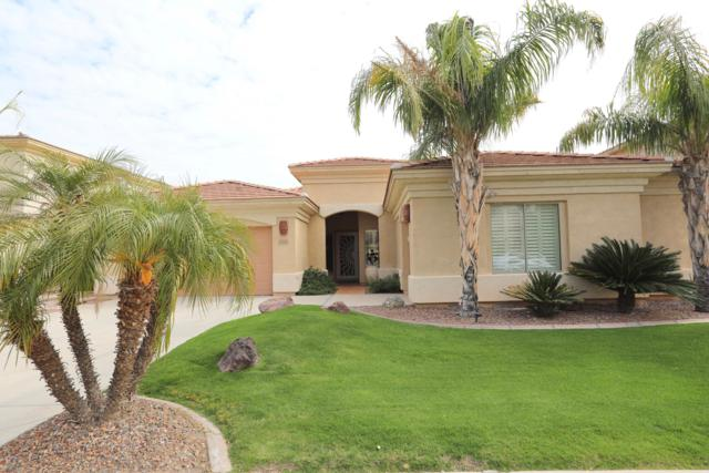 16513 N 170TH Lane, Surprise, AZ 85388 (MLS #5890206) :: Yost Realty Group at RE/MAX Casa Grande