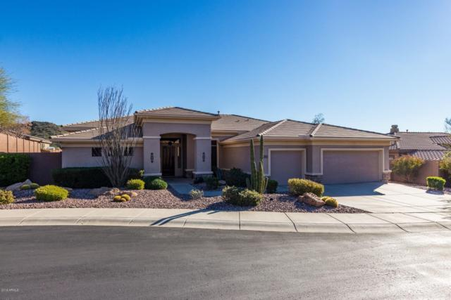 42413 N Long Cove Way, Anthem, AZ 85086 (MLS #5890256) :: The Daniel Montez Real Estate Group