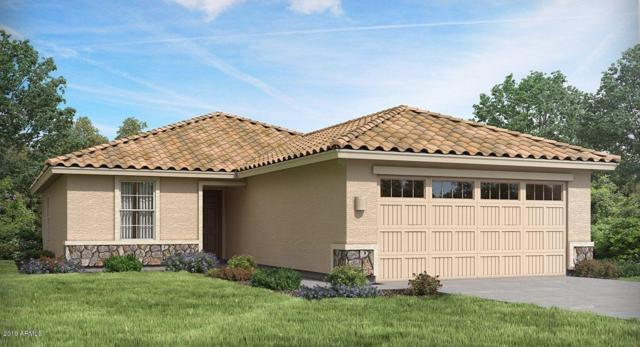7125 N 123RD Drive, Glendale, AZ 85307 (MLS #5890257) :: Santizo Realty Group
