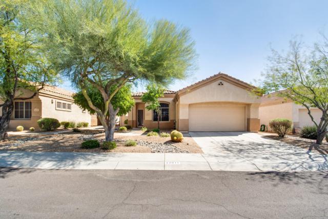 22611 N 53RD Street, Phoenix, AZ 85054 (MLS #5890278) :: RE/MAX Excalibur