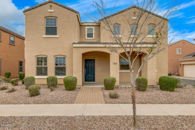 2849 E Bart Street, Gilbert, AZ 85295 (MLS #5890292) :: Yost Realty Group at RE/MAX Casa Grande
