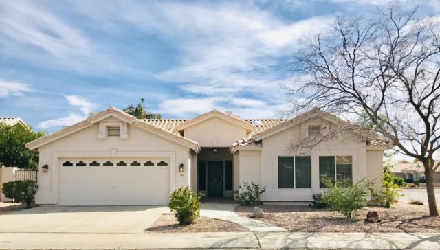 6989 W Williams Drive, Glendale, AZ 85310 (MLS #5890299) :: Yost Realty Group at RE/MAX Casa Grande