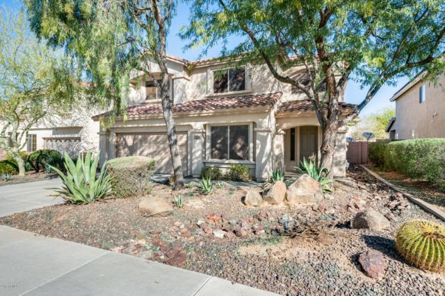 2208 W Blaylock Drive, Phoenix, AZ 85085 (MLS #5890335) :: Yost Realty Group at RE/MAX Casa Grande