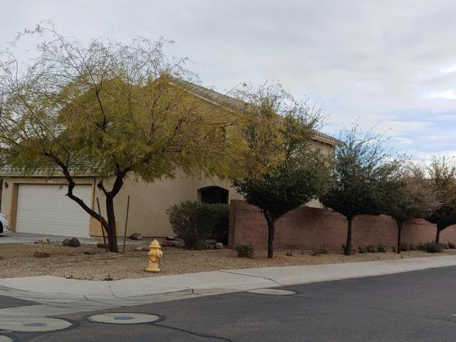 1749 S 155TH Lane, Goodyear, AZ 85338 (MLS #5890354) :: CC & Co. Real Estate Team