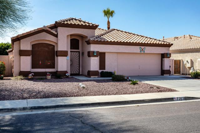 7263 E Lomita Avenue, Mesa, AZ 85209 (MLS #5890392) :: Yost Realty Group at RE/MAX Casa Grande