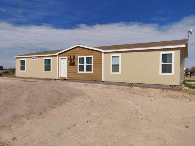 1534 S 365TH Avenue, Tonopah, AZ 85354 (MLS #5890412) :: The Garcia Group