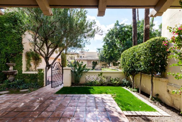 7500 E Mccormick Parkway #65, Scottsdale, AZ 85258 (MLS #5890416) :: Yost Realty Group at RE/MAX Casa Grande
