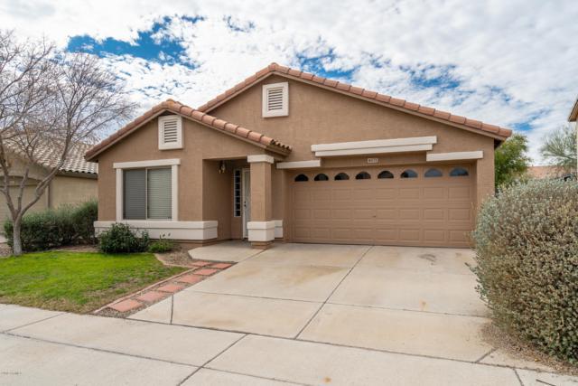 16573 W Latham Street, Goodyear, AZ 85338 (MLS #5890486) :: Phoenix Property Group