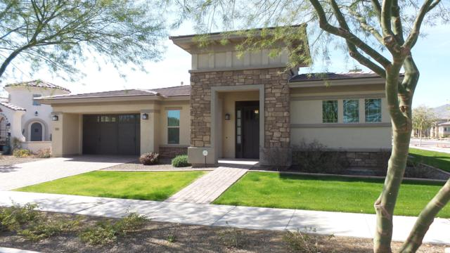 4896 N Grandview Drive, Buckeye, AZ 85396 (MLS #5890509) :: Arizona 1 Real Estate Team