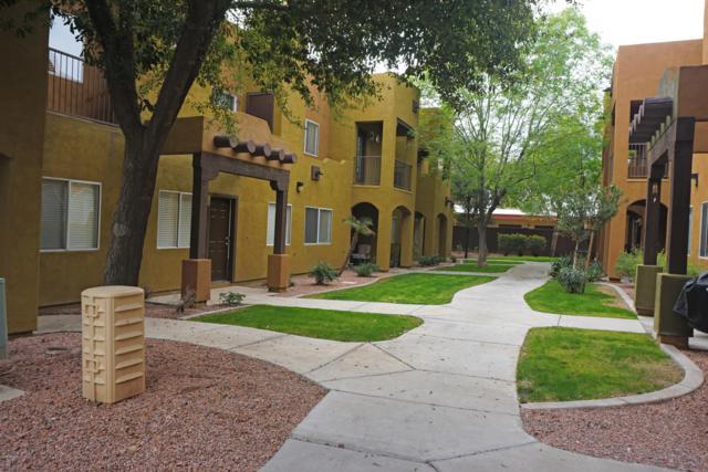 1718 W Colter Street #204, Phoenix, AZ 85015 (MLS #5890542) :: Yost Realty Group at RE/MAX Casa Grande