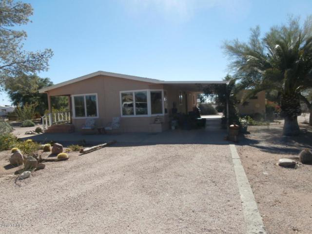 2633 E Superstition Boulevard, Apache Junction, AZ 85119 (MLS #5890568) :: Santizo Realty Group