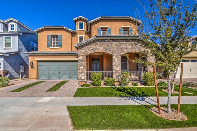 10518 E Monterey Avenue, Mesa, AZ 85209 (MLS #5890590) :: Yost Realty Group at RE/MAX Casa Grande