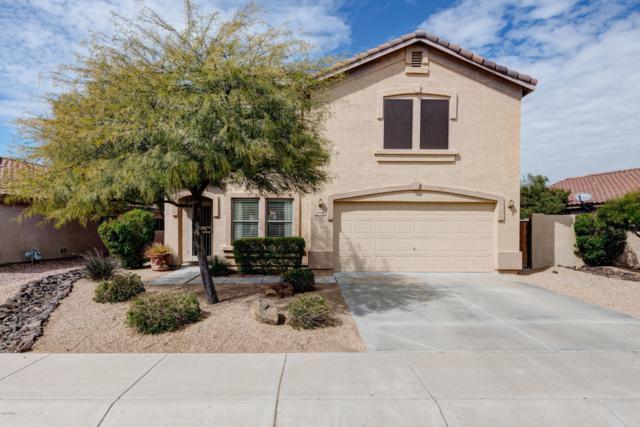 5126 E Mark Lane, Cave Creek, AZ 85331 (MLS #5890596) :: The Daniel Montez Real Estate Group