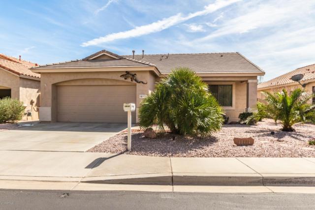 18117 W Camino Real Drive, Surprise, AZ 85374 (MLS #5890627) :: CC & Co. Real Estate Team