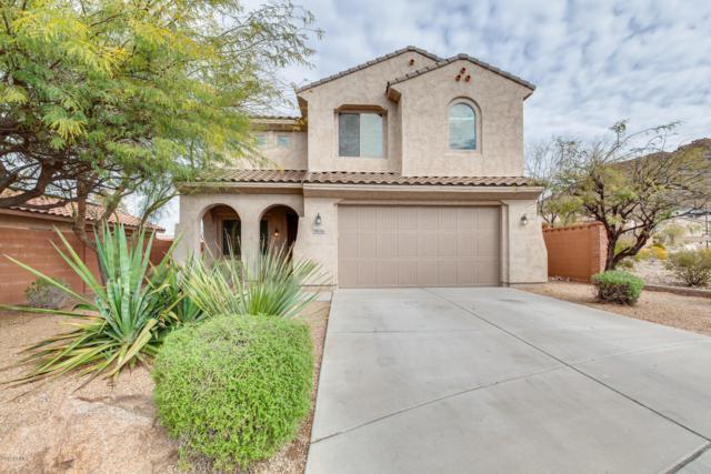 9036 W Hedge Hog Place, Peoria, AZ 85383 (MLS #5890683) :: The Laughton Team