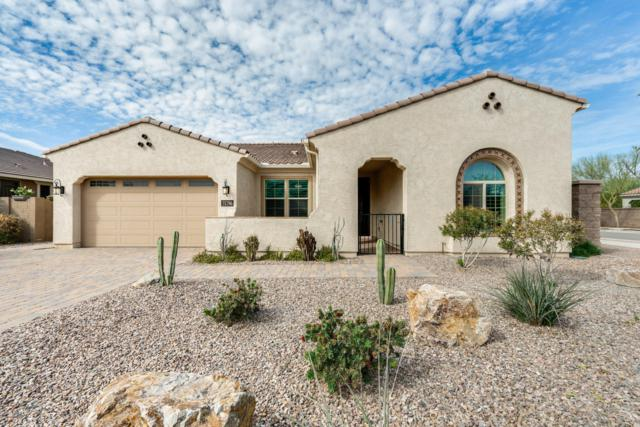21796 S 220TH Place, Queen Creek, AZ 85142 (MLS #5890712) :: Yost Realty Group at RE/MAX Casa Grande