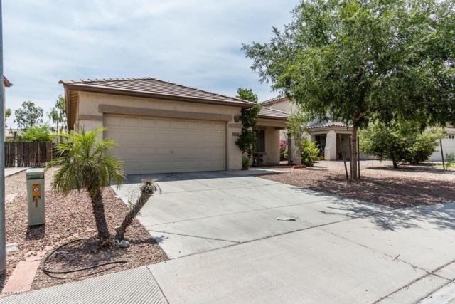 802 S 117TH Drive, Avondale, AZ 85323 (MLS #5890723) :: The Daniel Montez Real Estate Group