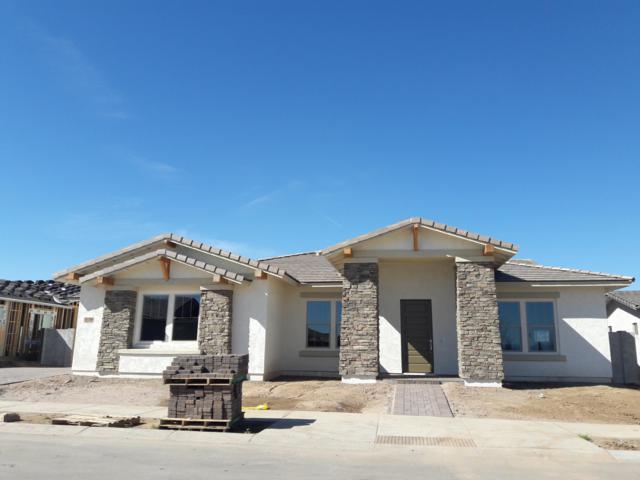 22778 S 229TH Way, Queen Creek, AZ 85142 (MLS #5890745) :: Revelation Real Estate