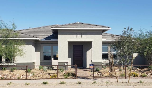 23054 E Desert Hills Drive, Queen Creek, AZ 85142 (MLS #5890749) :: Revelation Real Estate