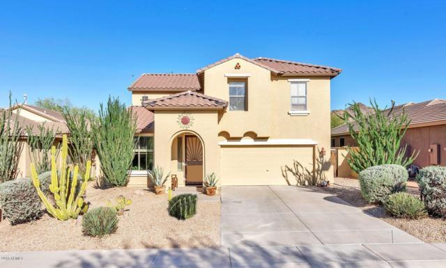 6818 W Nadine Way, Peoria, AZ 85383 (MLS #5890855) :: CC & Co. Real Estate Team