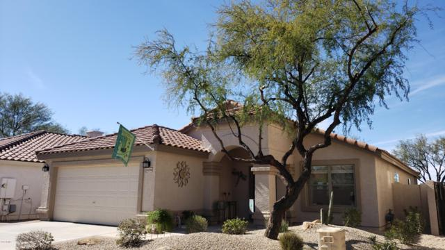26224 N 40TH Place, Phoenix, AZ 85050 (MLS #5890906) :: Lux Home Group at  Keller Williams Realty Phoenix
