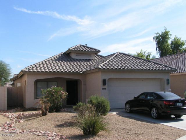 3405 N 129TH Drive, Avondale, AZ 85392 (MLS #5890911) :: CC & Co. Real Estate Team