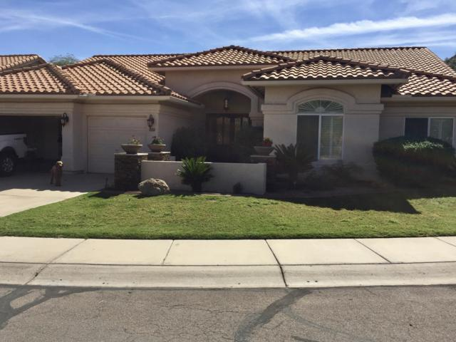 2519 E Bighorn Avenue, Phoenix, AZ 85048 (MLS #5890915) :: Yost Realty Group at RE/MAX Casa Grande