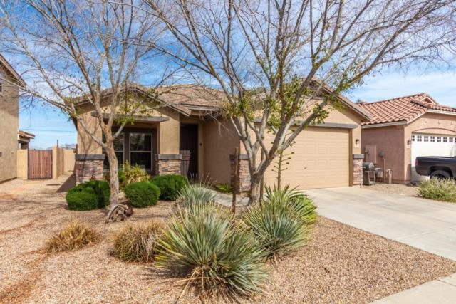22162 E Via Del Palo, Queen Creek, AZ 85142 (MLS #5890920) :: Arizona 1 Real Estate Team