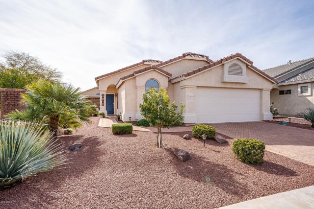 18219 W Buena Vista Drive, Surprise, AZ 85374 (MLS #5890929) :: Yost Realty Group at RE/MAX Casa Grande
