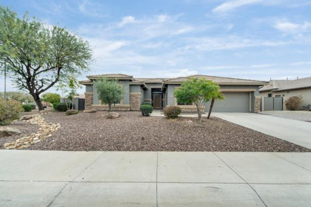 6671 S Crestview Drive, Gilbert, AZ 85298 (MLS #5890976) :: Kortright Group - West USA Realty
