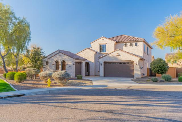 25972 W Yukon Drive, Buckeye, AZ 85396 (MLS #5890980) :: The Results Group